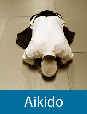 aikido seetrue maastricht center